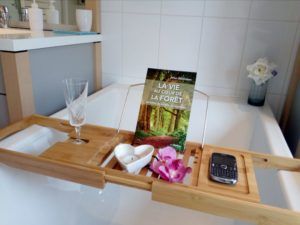 wellness stay with spa treatments